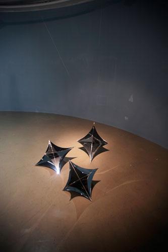 <em>Samsung(Tree Stars)</em>