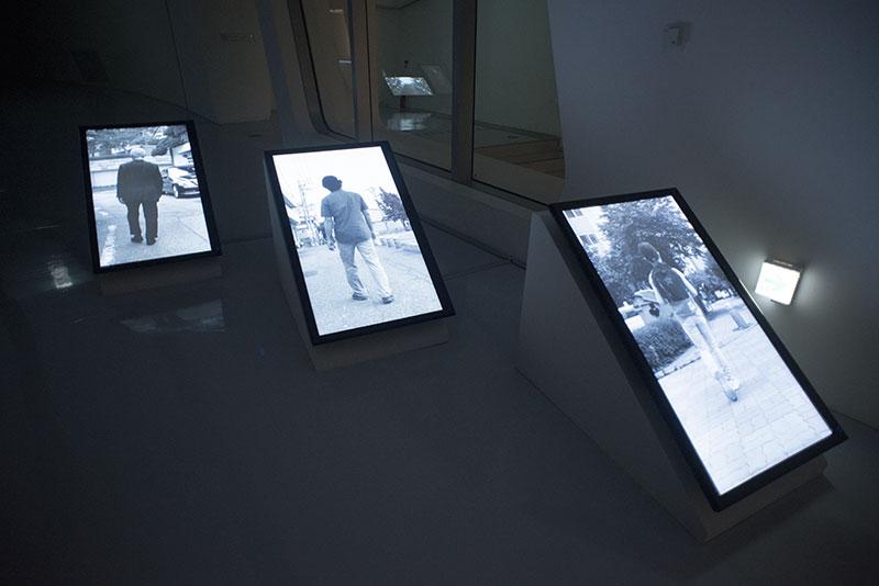 installation view #2 <em>Walk</em>
